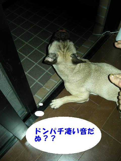 Dscn4145_2