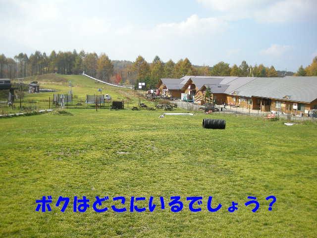 Dscn67841_2